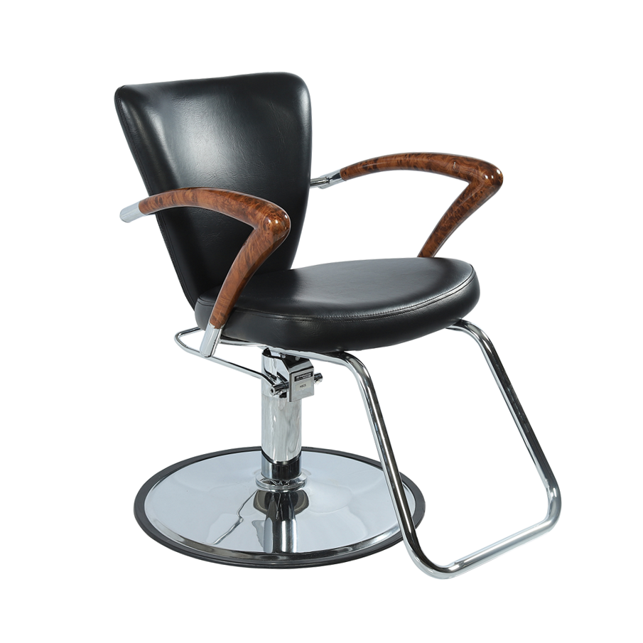 Superb Lumiere Salon Styling Chair Home Interior And Landscaping Eliaenasavecom