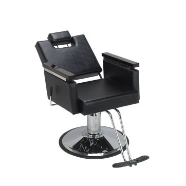 Shop All-Purpose Hair Styling Chairs